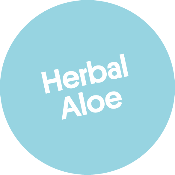 Natural Hand Sanitizer Herbal Aloe 250 ml von soeder*